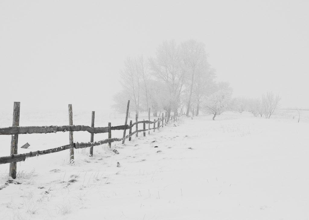 Atak zimy na wschodzie