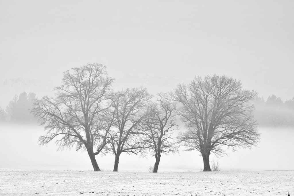 Zima w Polsce w niedzielę. Pogoda w Polsce