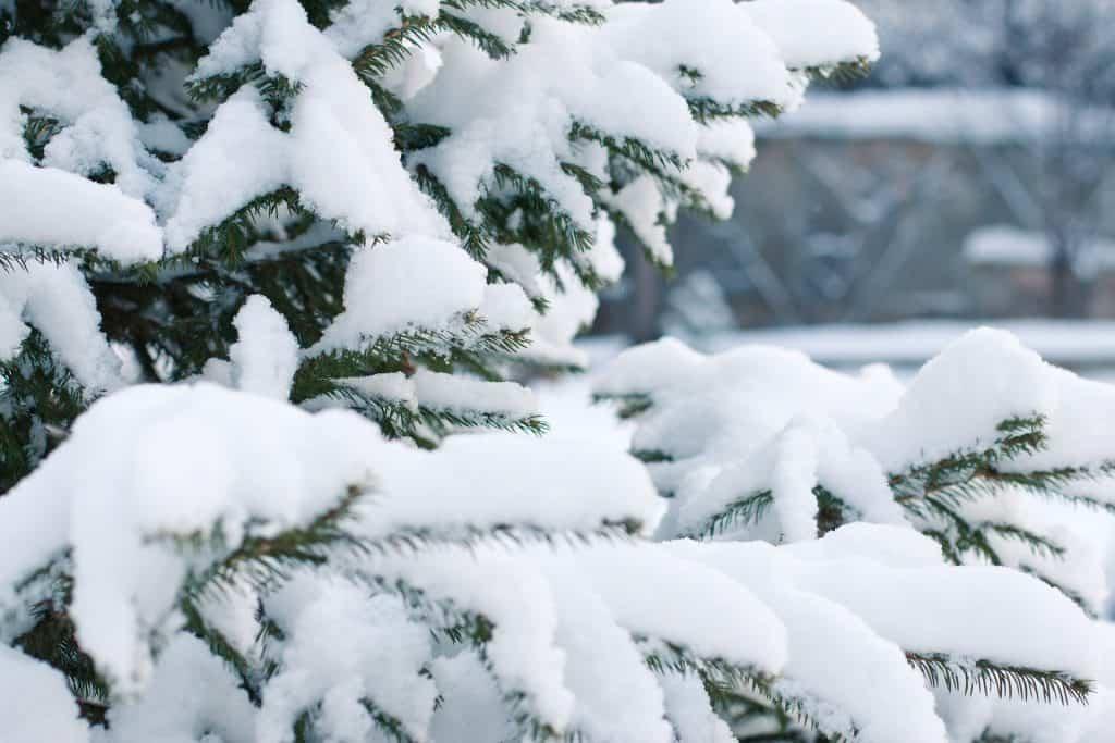Opady śniegu