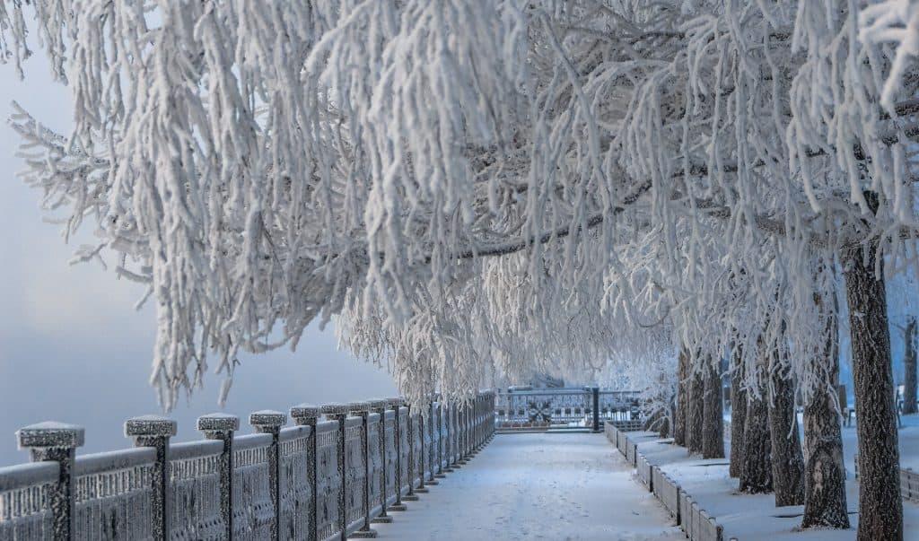 Zima i mróz