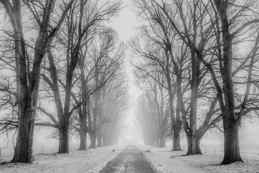 Śnieżyce na wschodzie