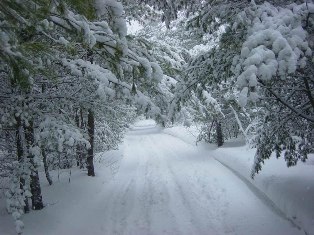 Śnieżyca w Polsce Wschodniej