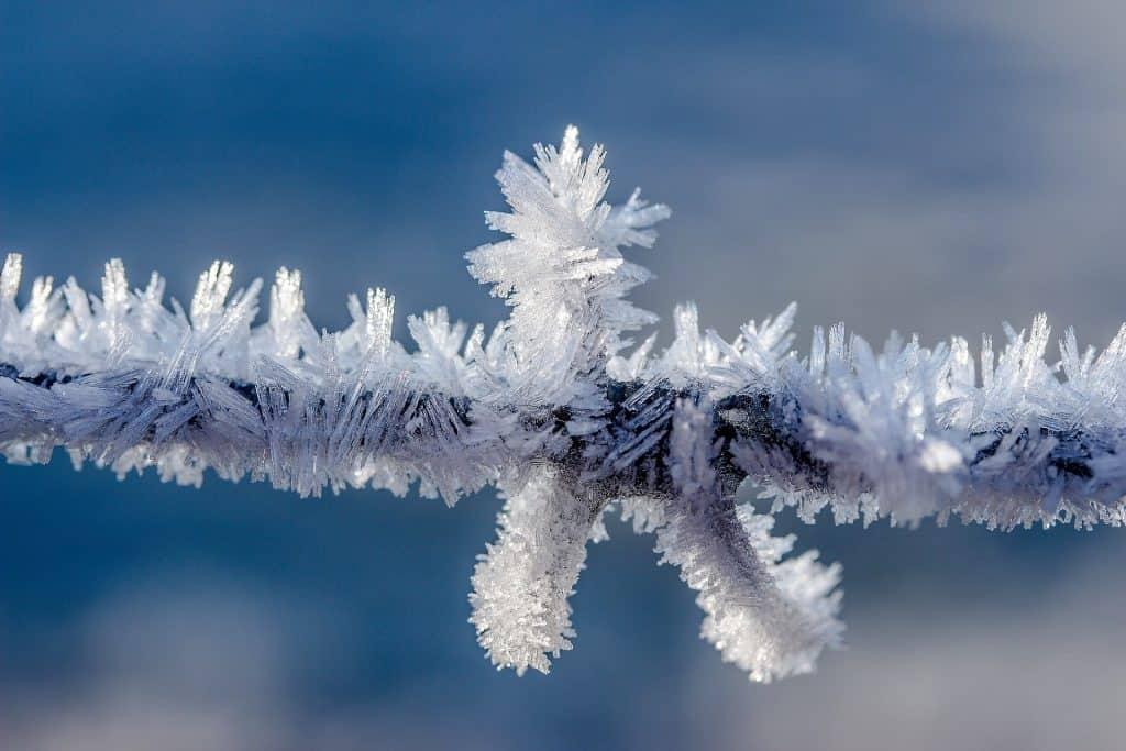 Pogoda w lutym 2021 szaleje. Z zimy do wiosny w Polsce. Atak zimy w wielu regionach Świata