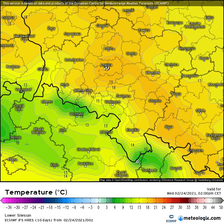 ECMWF, prognoza temperatury