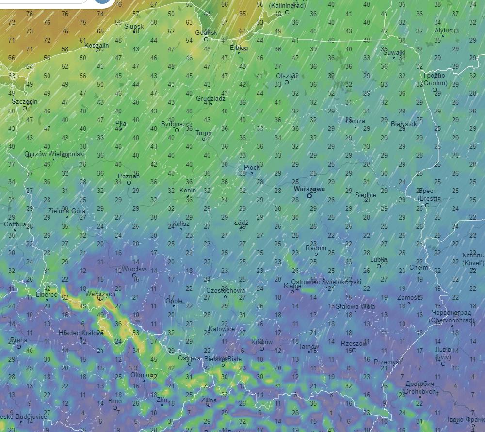 Pogoda. Prognozowane porywy wiatru nad ranem w poniedziałek.