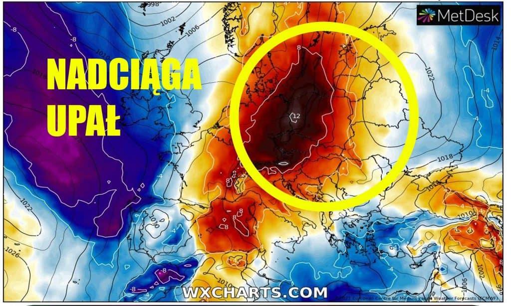 Pogoda. Upał w Polsce od połowy czerwca