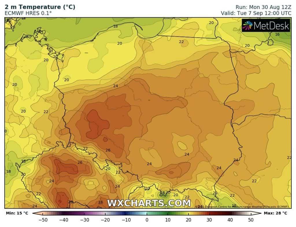 Upał w Polsce jednak możliwy? Wyliczenia modelu ECMWF
